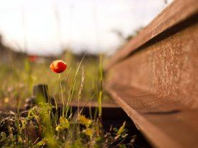 Riel de Ferrocarril para Reutilizar